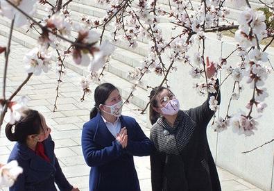 北朝鮮「感染者ゼロ」強調するが… 国内では発生確認?米政府系ラジオ報道