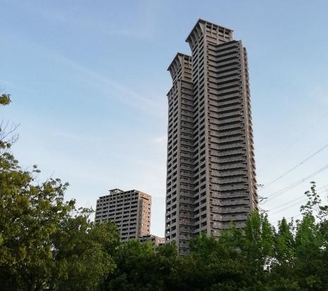 【画像あり】俺底辺、朝から公園で散歩しながらタワーマンションを見上げる・・・・・